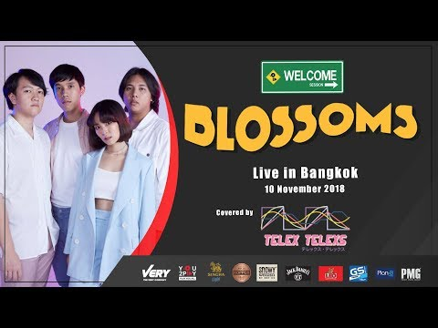 [You2Play Welcome Session] Honey Sweet - Blossoms (Cover by Telex Telexs)